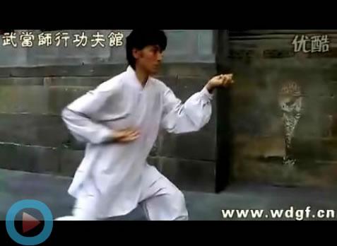 乌兹别克斯坦学员Aziz演练玄武拳