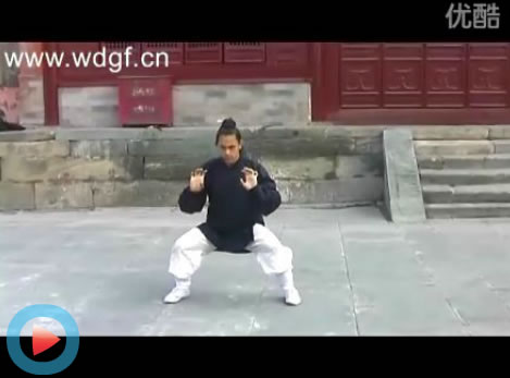 龙华拳――巴西学员