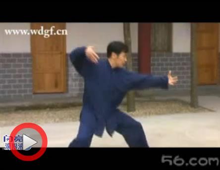 玄武拳 向远东演练 48岁 用十天时间学会此拳法