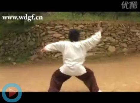 书法家 窦庆勃学员演练武当玄武拳