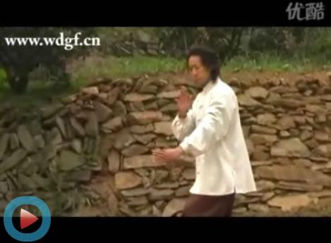 书法家 窦庆勃学员演练武当太极十三势