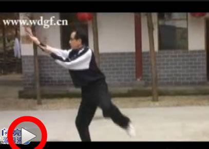 玄武拳 郑金放演练 58岁 用十天时间学会玄武拳