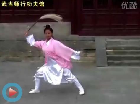 太极教练专修班――李树青视频